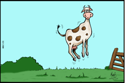 A JUMPING COW